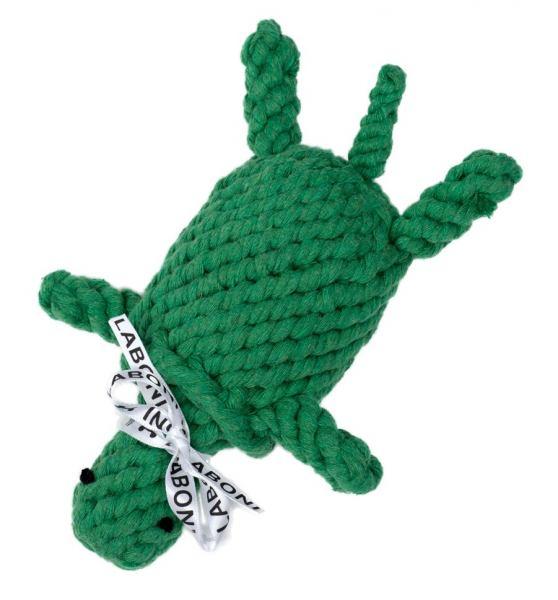 Tina Turtle - Rockröhre & Power-Turtle
