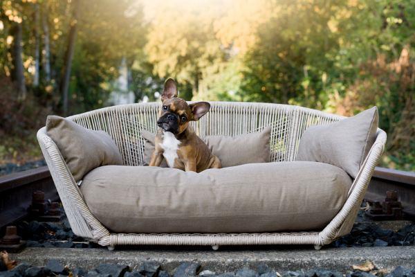 Hundebett Vogue Outdoor-Fango