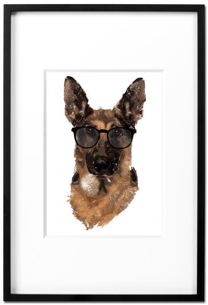 Schäferhund Schimanski - Kunstdruck