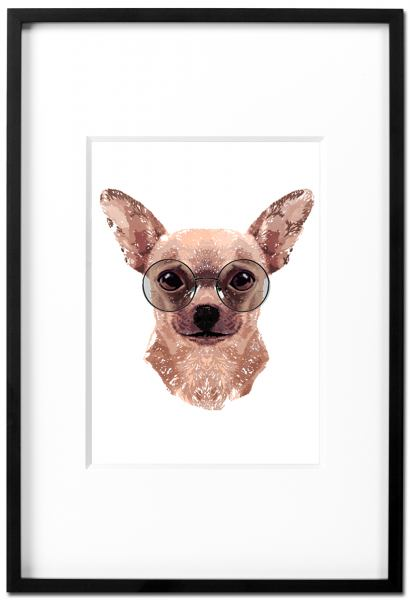 Chihuahua Steve - Kunstdruck