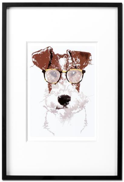 Fox Terrier Einstein - Kunstdruck